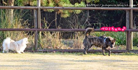 160111_yuasa13.jpg