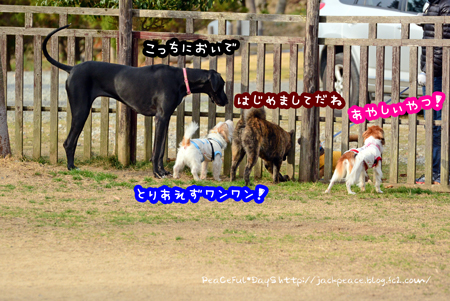 160116_yuasa5.jpg