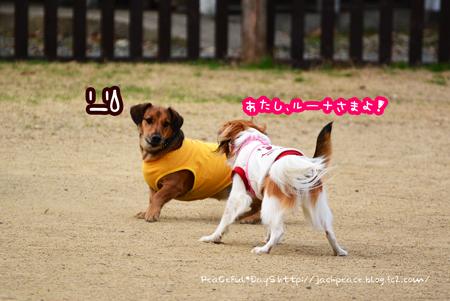 160116_yuasa8.jpg