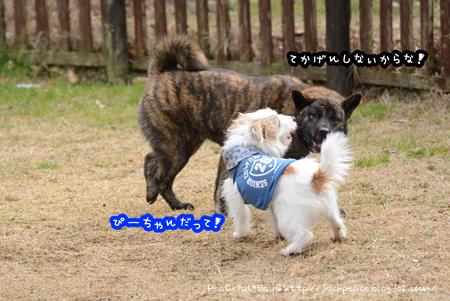 160125_yuasa2.jpg