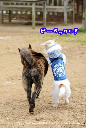 160125_yuasa3.jpg