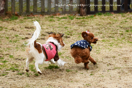 160130_yuasa10.jpg