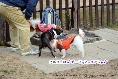 160205_yuasa10.jpg