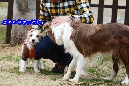160205_yuasa23.jpg