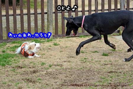 160205_yuasa7.jpg