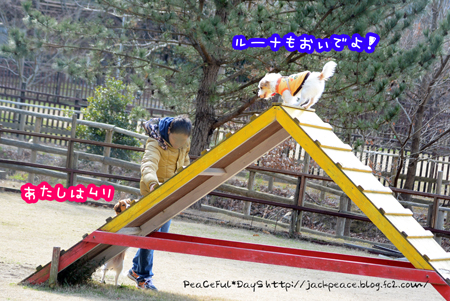 160210_yuasa10.jpg