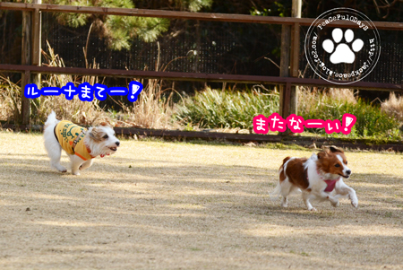 160210_yuasa12.jpg