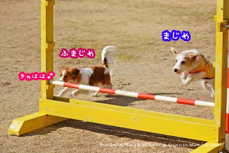 160210_yuasa4.jpg