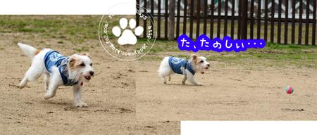 160215_yuasa19.jpg