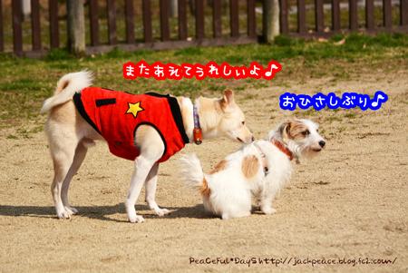 160226_yuasa2.jpg
