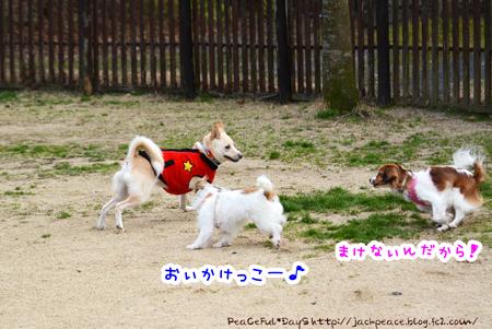 160226_yuasa7.jpg