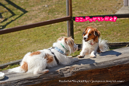 160303_yuasa10.jpg