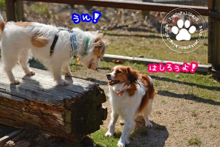 160303_yuasa11.jpg