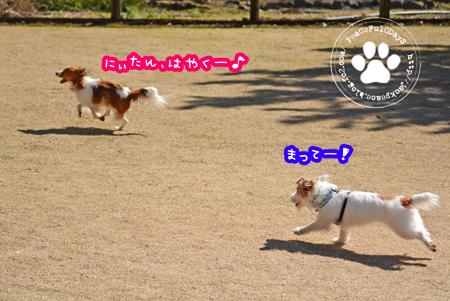 160303_yuasa13.jpg