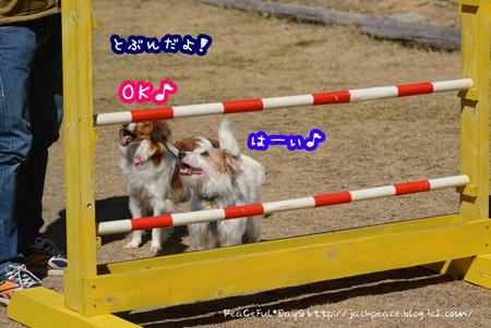 160303_yuasa4.jpg