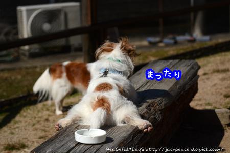 160303_yuasa9.jpg