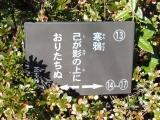 JR松丸駅 芝不器男歌碑13 説明