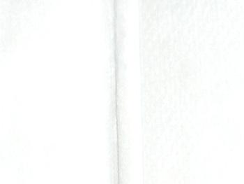 ライスフォース アクポレス