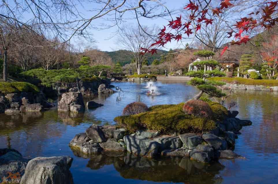 20151128冬桜_藤岡桜山公園01