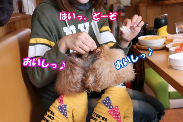 20180211あいべいさんささみステーキ実食福詩ちゃん2