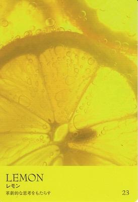 カラーカード:レモン