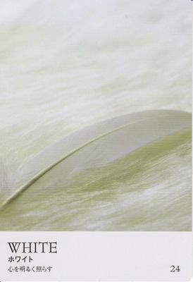 カラーカード:ホワイト