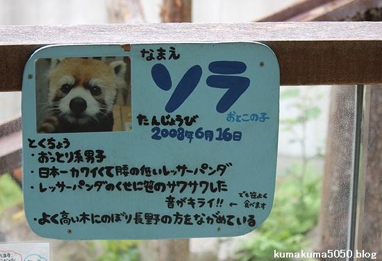 とくしま動物園_38