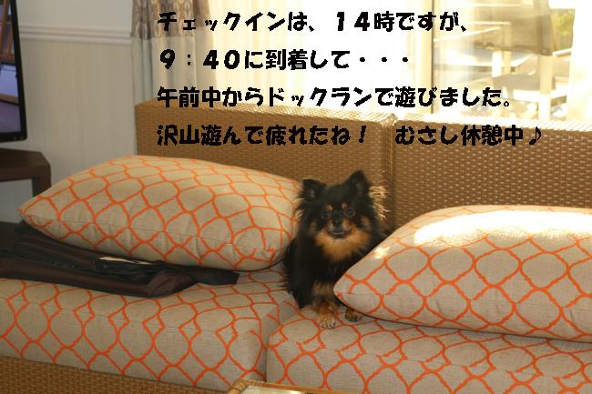 201-8765-8765-777.jpg