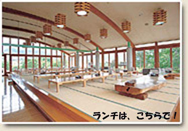 onsen04-987655-98776-555.jpg