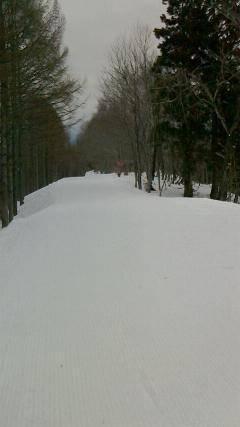 自然観スキー場1