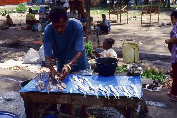 フローレス島の魚屋さん