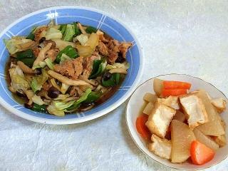151204_3646野菜炒め・厚揚げと根菜の煮物VGA