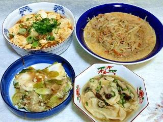 160212_3762ピリ辛麻婆豆腐・豚挽肉とモヤシのとんこつ醤油炒め・玉子のすき煮・水餃子VGA