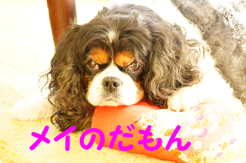 20151109160033ad1.png