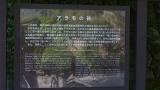 20150501足助岡崎433