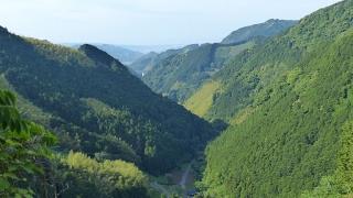 20150523炭焼平山線051