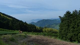 20150523炭焼平山線057