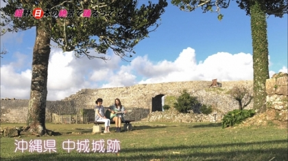 151226電照菊 (11)