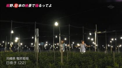 151226電照菊 (2)
