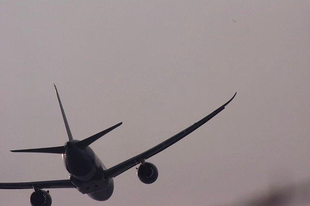 シグマAPO50-500で福岡空港出撃 2