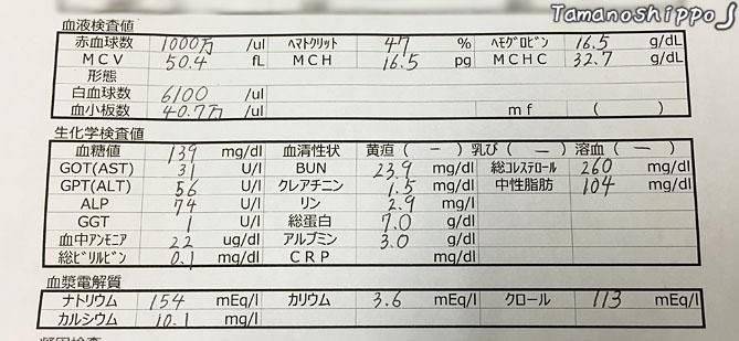 血液検査(ちび)201602