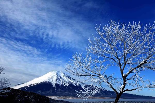 20151122 富士山