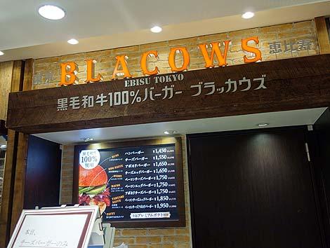 blacows0.jpg