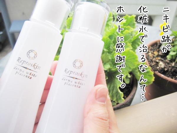ニキビ跡に効く化粧水リプロスキン