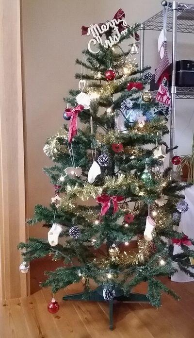 目を奪われる大きなツリー