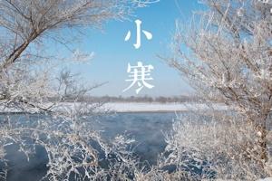小寒2016