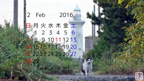 2016 2月 猫 デスクトップカレンダー