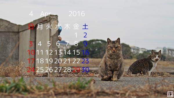 2016年4月 猫カレンダー
