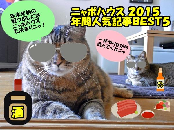 ニャポハウス 2015 BEST5