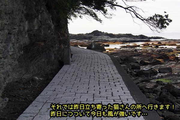 ニャポ旅17 伊豆下田その1